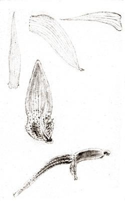 96-1674a.jpg