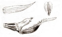 96-1636b.jpg