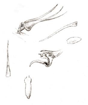 96-1592b.jpg
