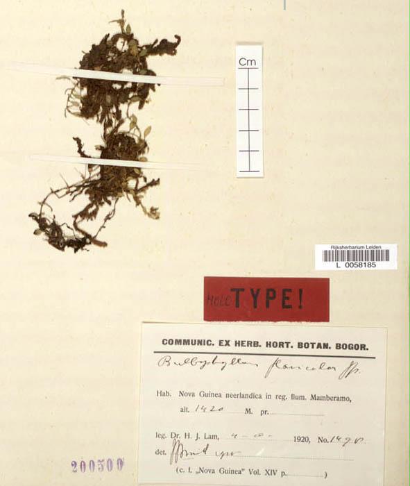 96-659t.jpg