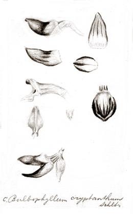 96-434a.jpg