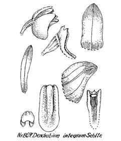 214-1035.jpg