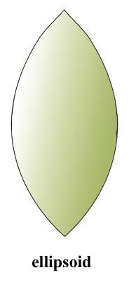 ellips~1.jpg
