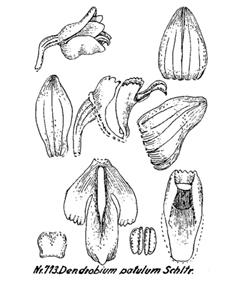 214-1594.jpg