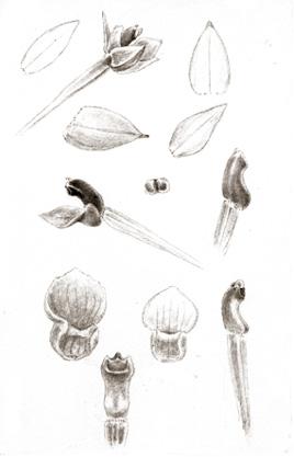 24-83b.jpg