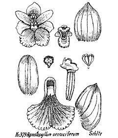 24-111.jpg
