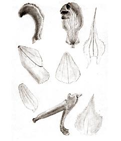 57-5.jpg