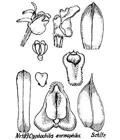 57-10.jpg