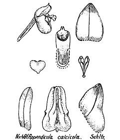 57-30.jpg