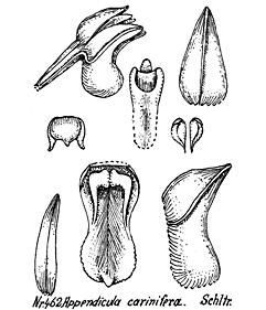 57-34.jpg