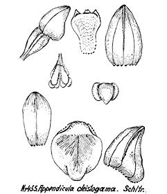 57-38.jpg