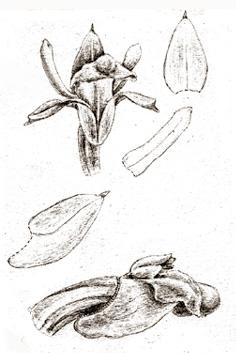 57-58b.jpg