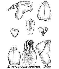 57-60.jpg