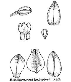 57-61.jpg