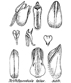 57-67.jpg