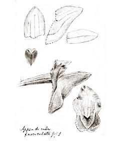 57-68.jpg