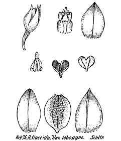 57-71.jpg