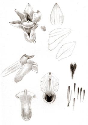 57-80b.jpg
