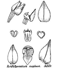 57-92.jpg