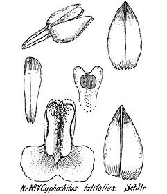 57-105.jpg