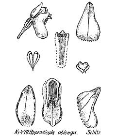 57-140.jpg
