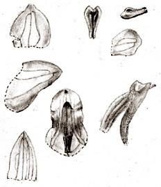 57-150a.jpg