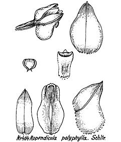 57-165.jpg