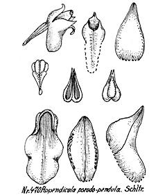 57-167.jpg