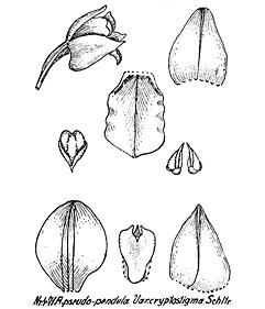 57-168.jpg