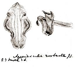 57-181b.jpg
