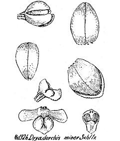 258-3.jpg