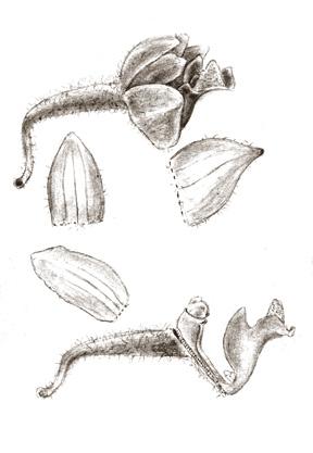 282-395a.jpg