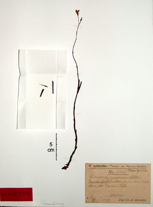 399-29t.jpg