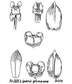 416-193.jpg