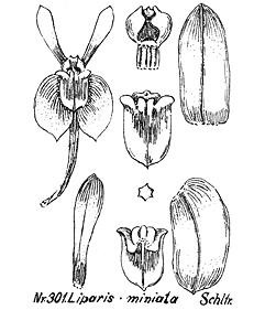 416-300.jpg