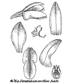 214-172.jpg