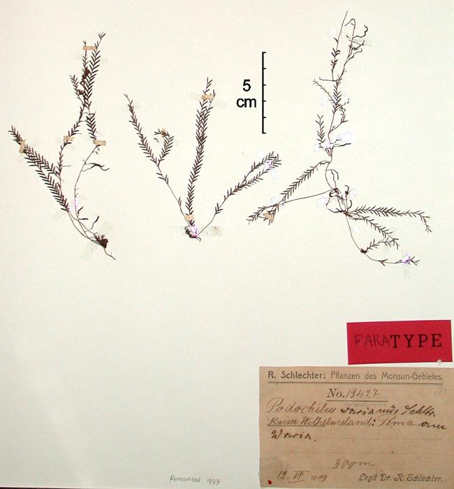 568-146u.jpg