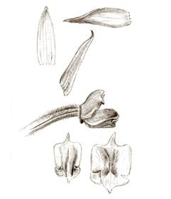 564-49.jpg