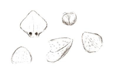 549-216a.jpg
